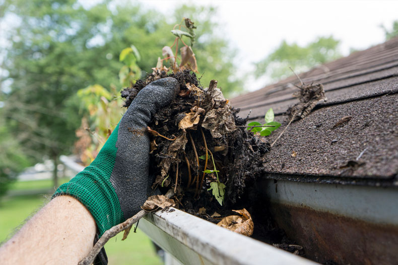 Gutter Cleaning Alert – Fall is Almost Here