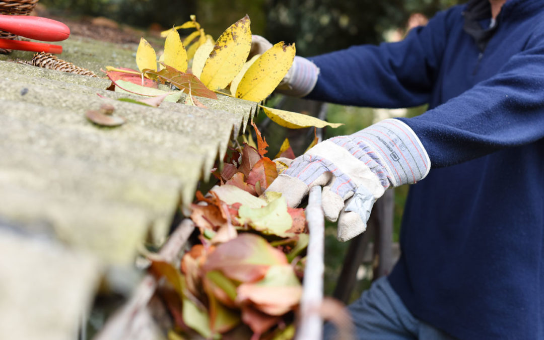 It's Time to Schedule Your Fall Gutter Cleaning Service